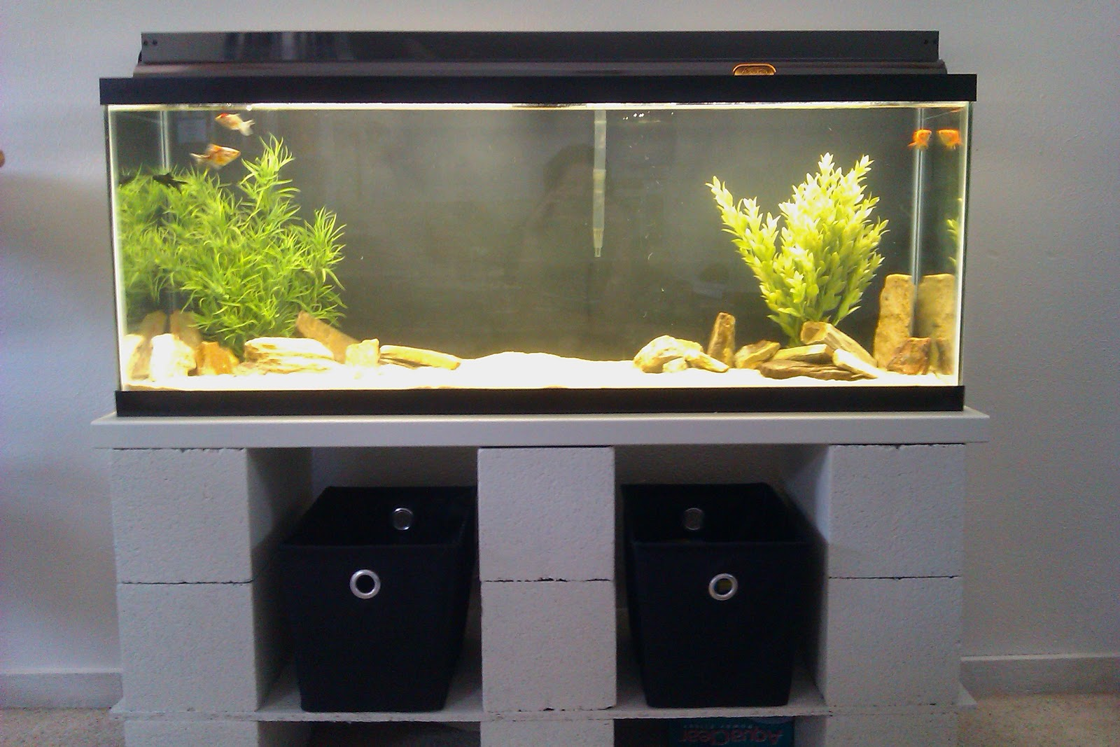 Pink aspen projects diy cinder block aquarium stand for Adding onto a manufactured home