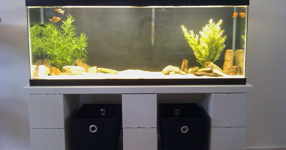 Pink Aspen Projects Diy Cinder Block Aquarium Stand