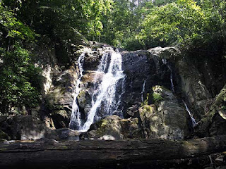 agasthyamala waterfall