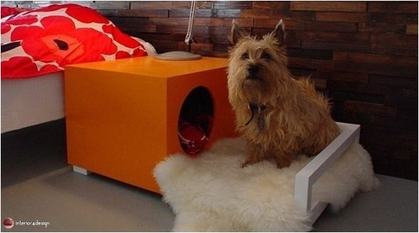 10 Decorating Ideas For Pet Lovers