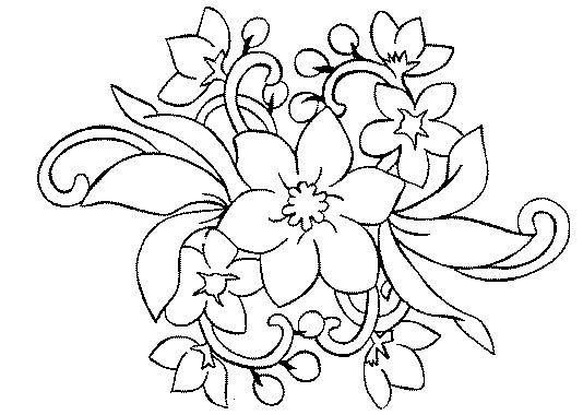 Imagenes De Flores Mas Hermosas Del Mundo: Imagenes De Flores Para ...
