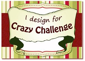 The Crazyy Challenge Design Team