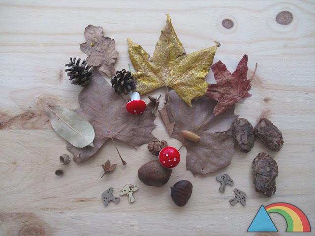 Elementos otoñales: hojas secas, piñas, bellotas, setas...