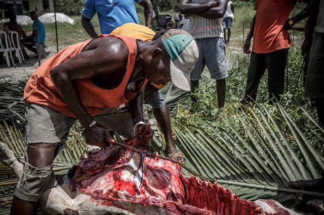 ガーナ 儀式  Ghana  ritual sacrifice 牛 cow 解体 dissection