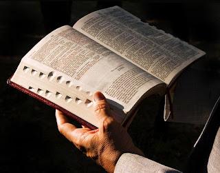 Plante no coração, as sementes do evangelho de Cristo!