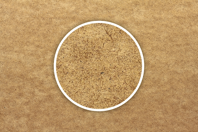 Wood, Ply, Macro, 3888 x 2592