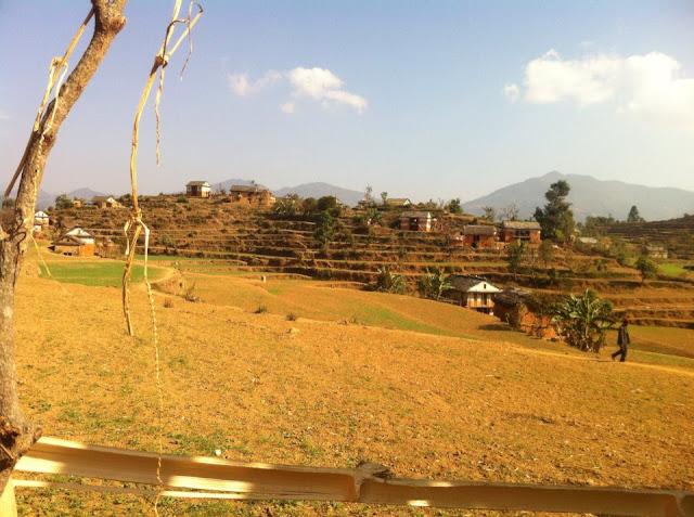 Dhakari in Sunny day