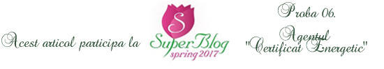 http://super-blog.eu/2017/03/13/proba-6-agentul-certificat-energetic/