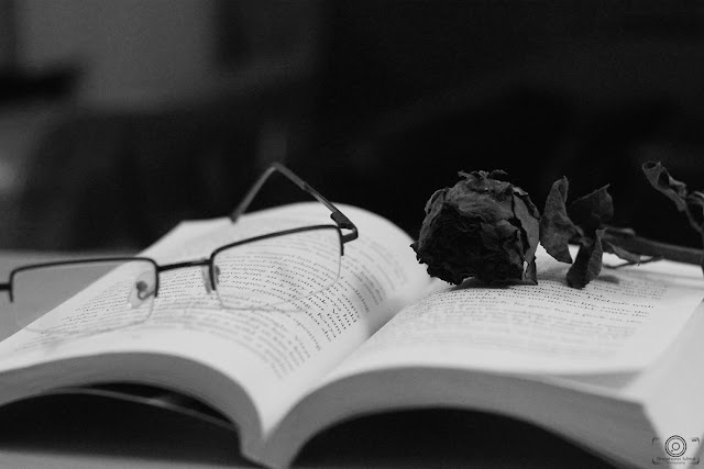 book, still life, photography, book lovers, shashank mittal, shashank mittal photography