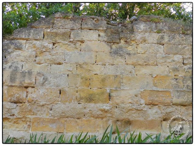SAINT-ROMAN-DE-MALEGARDE (84) - L'ancien château-fort des seigneux des Templiers