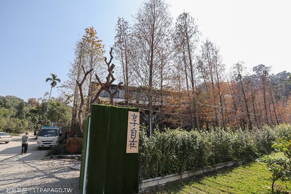 台中北屯|澄石享自在生態園區|走木棧道進入落羽松秘境|用餐享受輕鬆自在