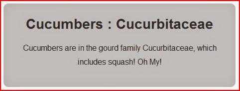 Cucumbers : Cucurbitaceae gray box