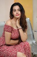 Diksha Panth in a Deep neck Short dress at Maya Mall pre release function ~ Celebrities Exclusive Galleries 015.JPG