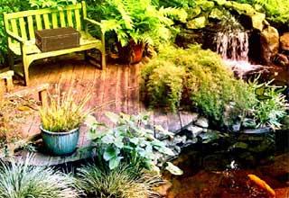 Escape Botanical Garden