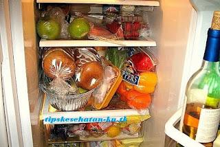 menyimpan makanan dalam kulkas