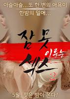 Sleepless Sex 2 (2016)