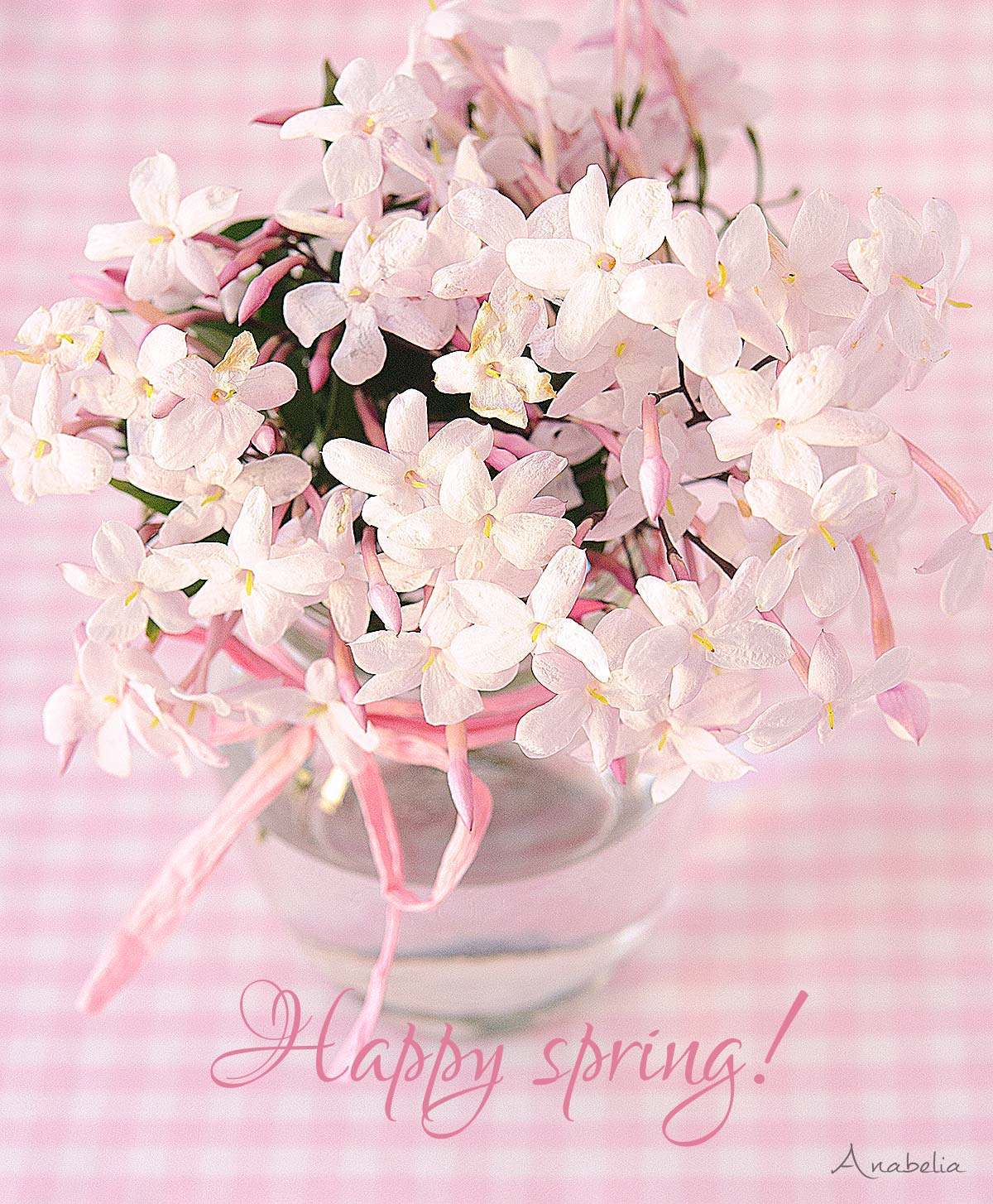 Happy spring by Anabelia