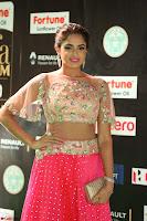 Asmita Sood in Pink skirt at IIFA Utsavam Awards 2017  Day 2  Exclusive 09.JPG