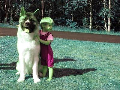 el akita y los niños