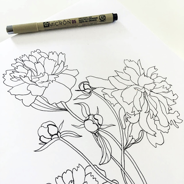 micron pen, sketchbook drawing, peonies, botanical sketchbook, botanical drawing, black and white drawing, Anne Butera, My Giant Strawberry