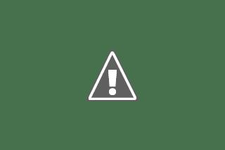 elektron,proton,netron
