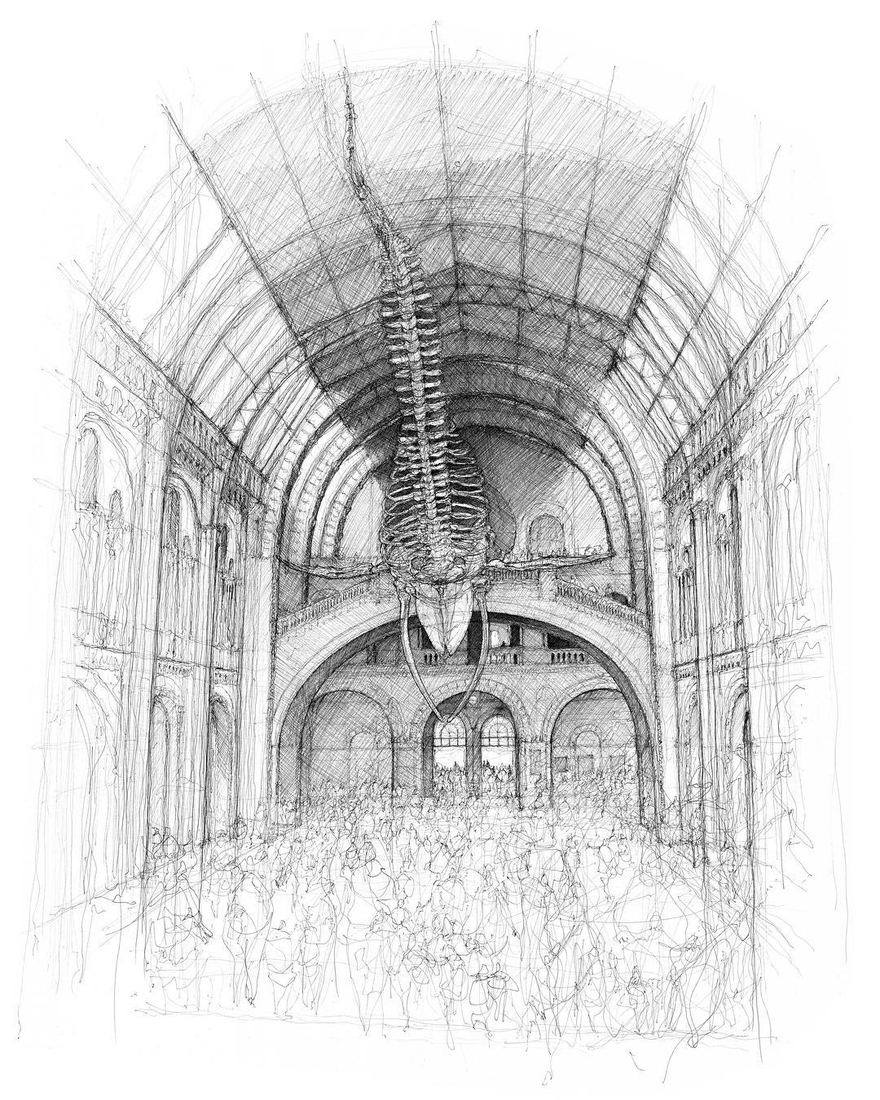 02-The-Natural-History-Museum-Hintze-Hall-London-Luke-Adam-Hawker-Architectural-Illustration-of-Imposing-Buildings-www-designstack-co