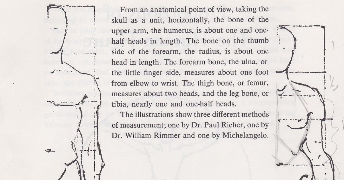 Paper Doll School: The Basics of Anatomy
