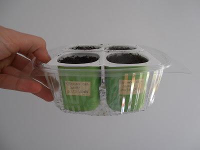 recicla-envases-yogurt