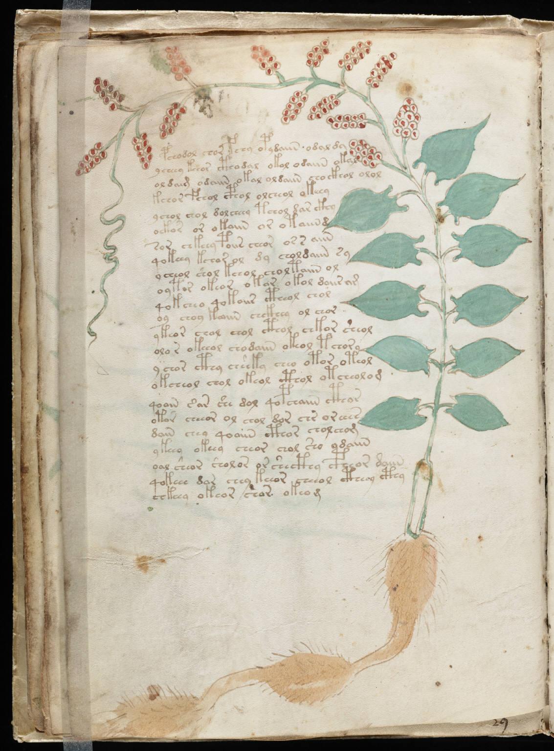 manuscrito034