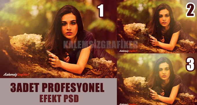 3 Adet Profesyonel Efekt PSD