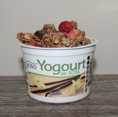 Yoso Yogurt with Granola