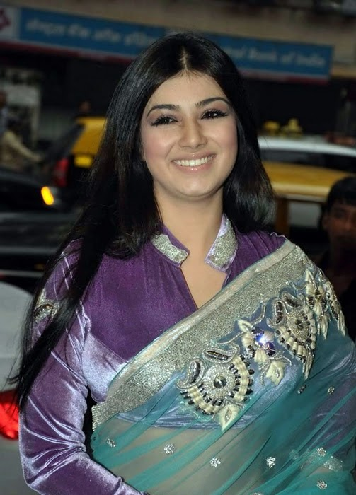 All Stars Photo Site Ayesha Takia In Transparent Saree -1713