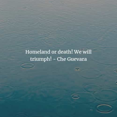 Famous quotes and sayings by Ernesto Che Guevara