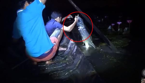 (Video) Lelaki nyaris lemas ditarik tangan lembaga hitam dalam air.Perhatikan Betul-betul