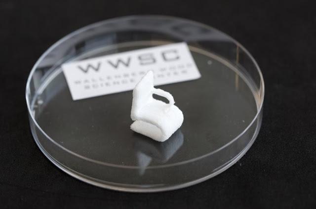 Print Tiga Dimensi Bisa Mencetak Selulosa dari Kayu Alternatif Sebagai Pengganti Plastik