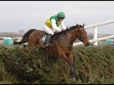 Hedgehunter wins Grand National