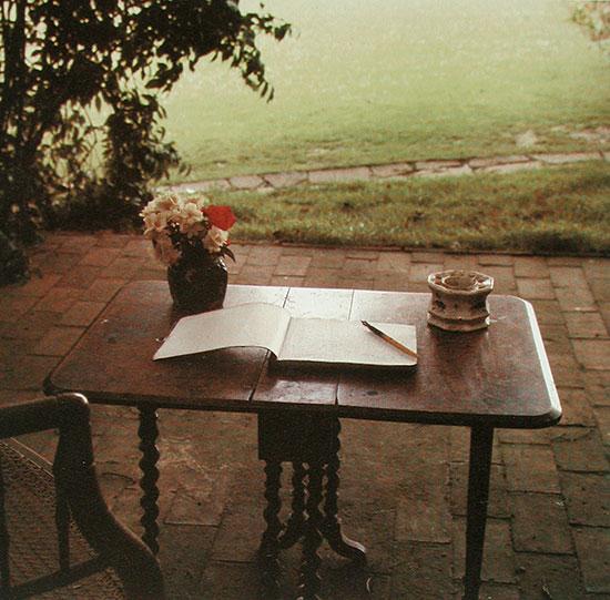 V. y los rododendros | prosas_y_cosas