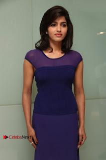 Tamil Actress Dhansika Stills in Purple Long Dress at Simba Audio Launch  0010.jpg