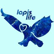 Logo von lapis life: Eine lapislazuli Eule auf türkisem Hintergrund.