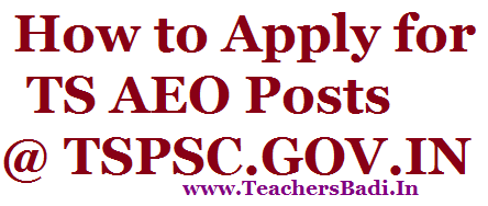 How to Apply,TS AEO Posts 2016,TSPSC.GOV.IN