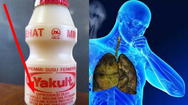 FAKTA MENGEJUTKAN !!! Apakah Anda Sering Minum Susu Fermentasi Ini? Kalo Iya Berarti Anda Wajib Baca