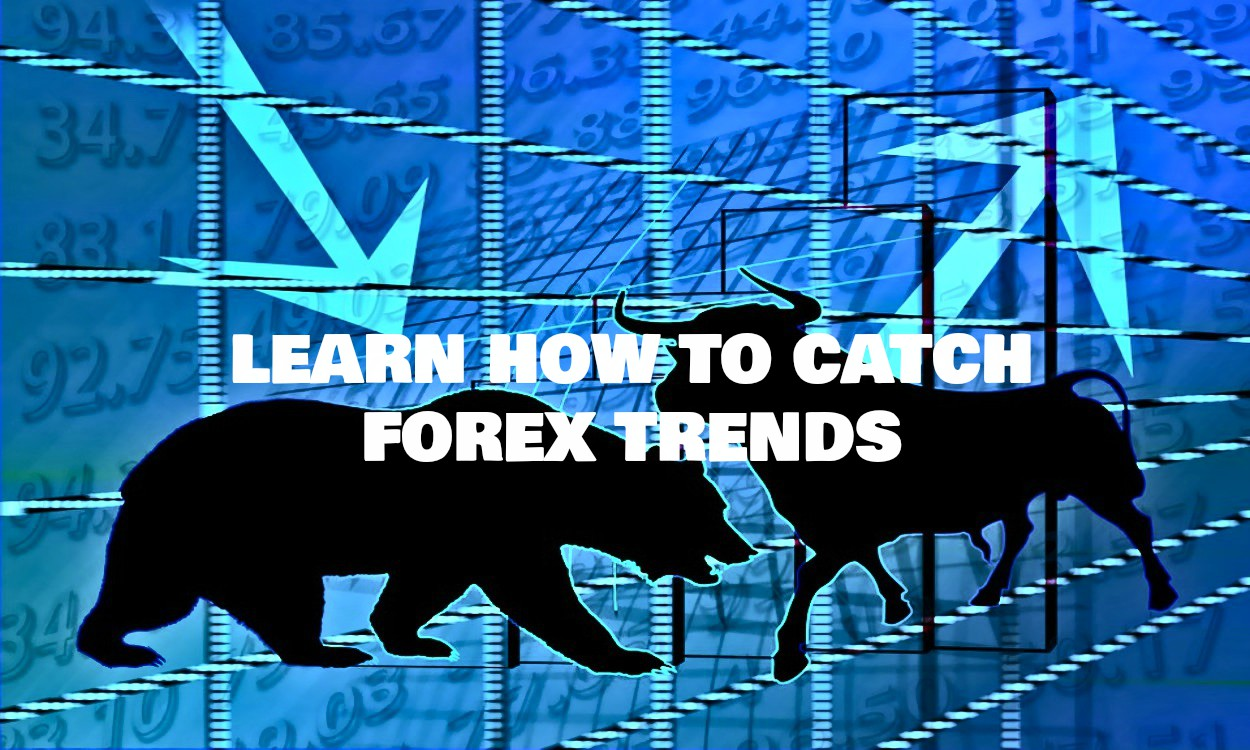 Forex trading learning videos