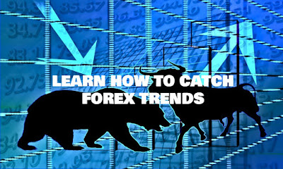 Learn How To Catch Forex Trends, Learn, How, To, Catch, Forex, Trends, Forex Indicators, Forex Strategy, Buy Forex Signals, Trading Strategy