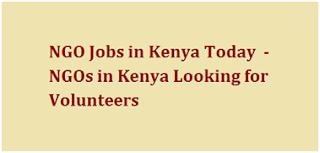 NGO Jobs in Kenya Today