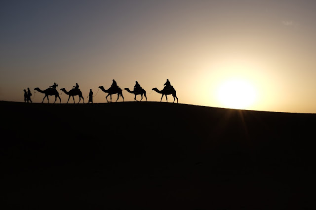 Adventure on Camels at Sahara Desert