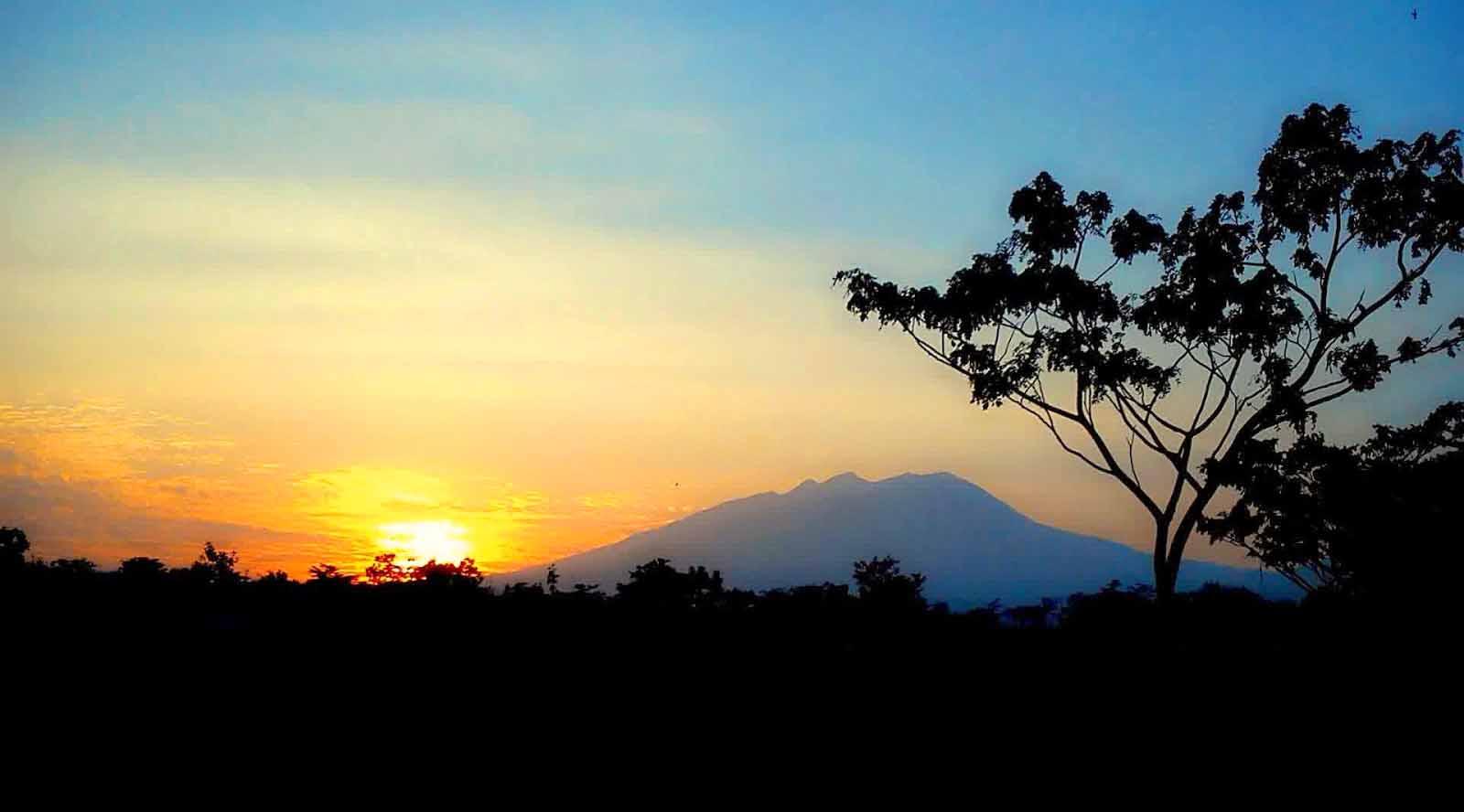 gunung lawu di jawa timur gunung lawu dan misterinya  eyang gunung lawu edelweis ungu gunung lawu evakuasi gunung lawu burung endemik gunung lawu ekspedisi gunung lawu eyang bancolono gunung lawu edelweis di gunung lawu