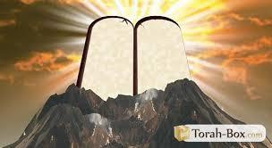 La preuve est faite par La Bouche de Ses Prophètes. Et en particulier par les écrits d'Enoch (livre tenu secret) septième après Adam, qui sont parvenus Par La Voie Céleste pour Les Justes et les élus de notre époque.