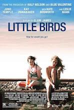 Little Birds (2011)