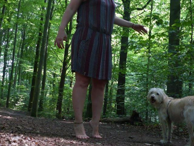 Zeit vergeuden Achtsamkeit Entschleunigung Wald Hund Spaziergang  diegeschenkten5minutenchallenge barfuß Zehenspitzen