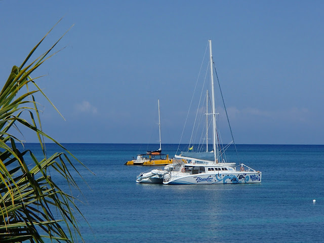 Negril sailboats